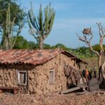 Artista Edson Duarte lança exposição Casas Antigas do Sertão – História em Miniaturas