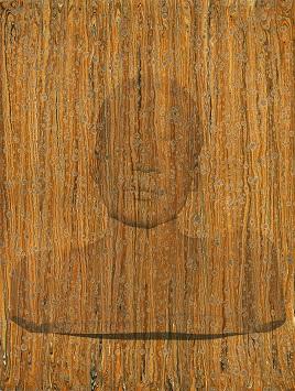 Pinacoteca de São Paulo promove mostra panorâmica de Rosângela Rennó